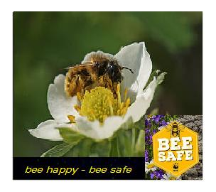 Campagna BEE SAFE